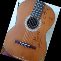 Đấu giá đàn guitar